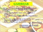 gambhar