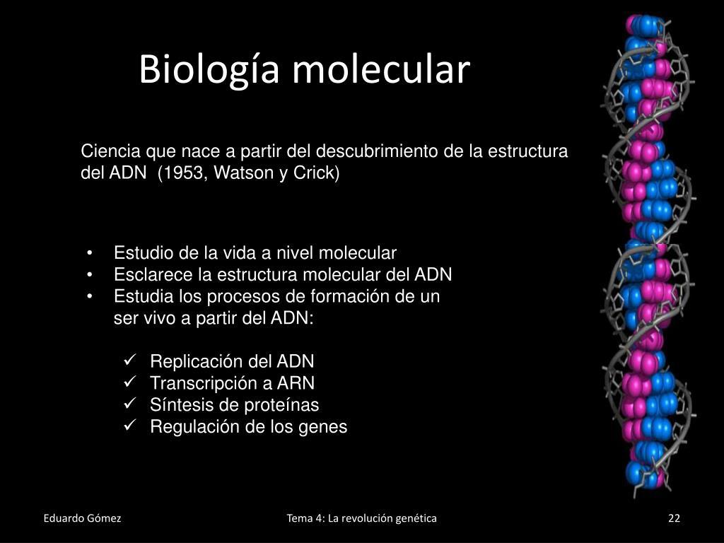 Ppt La Revolución Genética Powerpoint Presentation Free