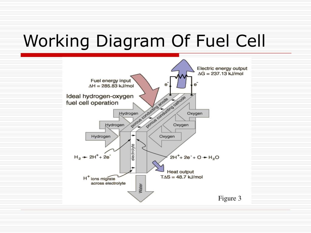 ppt - fuel cells powerpoint presentation