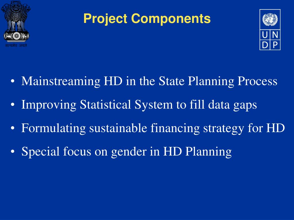 Mainstreaming HD in the State Planning Process
