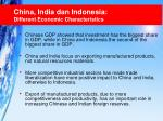 china india dan indonesia different economic characteristics