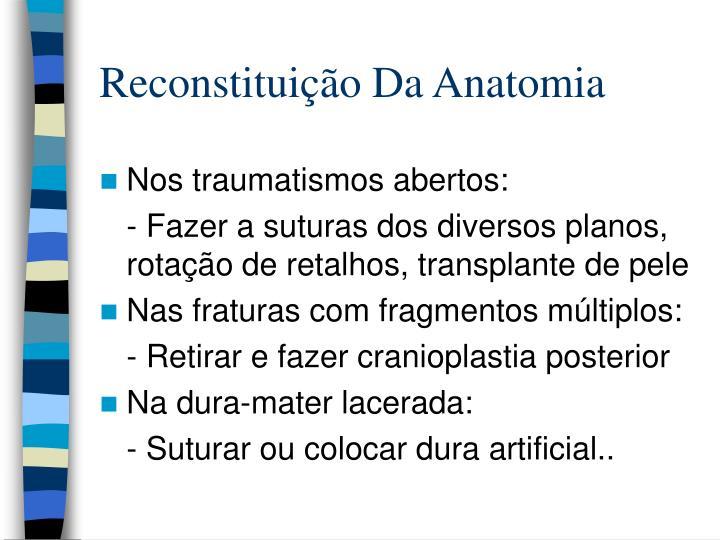 Reconstituição Da Anatomia