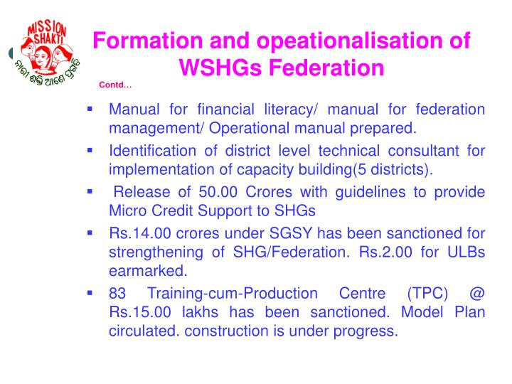 Formation and opeationalisation of WSHGs Federation