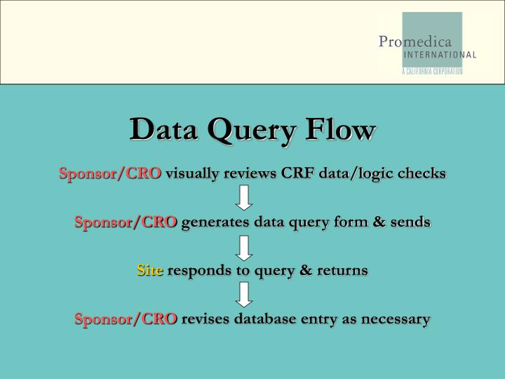 Data Query Flow