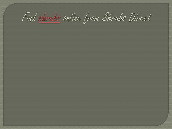 find shrubs online from shrubs direct n.