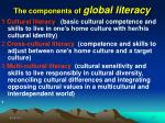 the components of global literacy