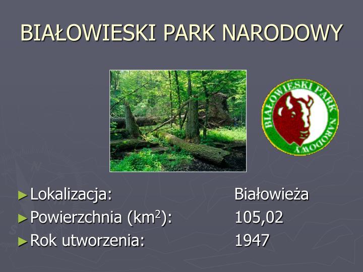 Bia owieski park narodowy