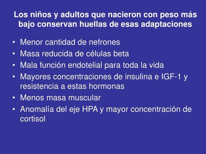 Los niños y adultos que nacieron con peso más bajo conservan huellas de esas adaptaciones