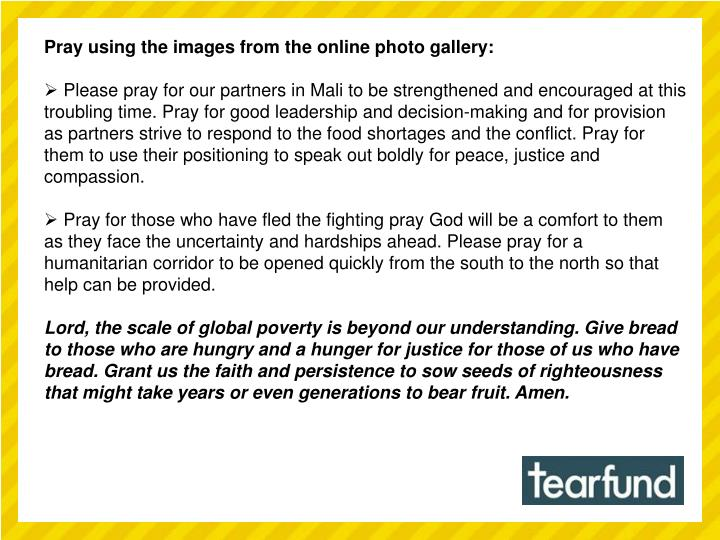 Pray using the images from the online photo gallery: