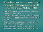 snowshoe hares occur in northern states and cottontails occur in on qc mb sk ab and bc but