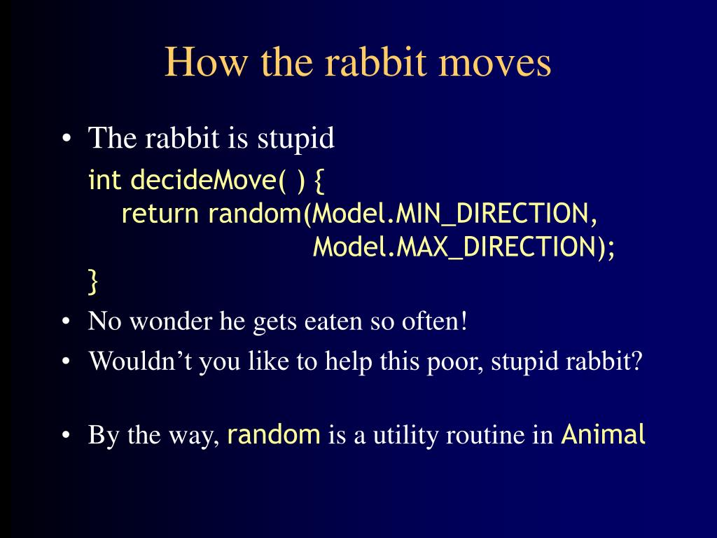 How the rabbit moves