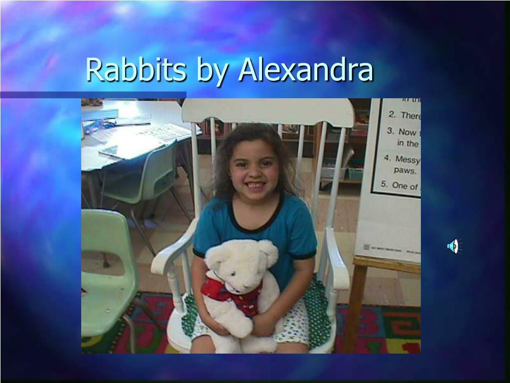 rabbits by alexandra