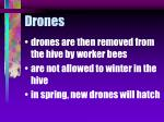 drones72