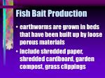 fish bait production