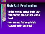 fish bait production35