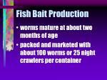 fish bait production36