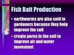 fish bait production37