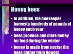 honey bees58