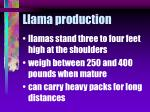 llama production27