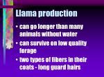 llama production28
