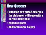 new queens77
