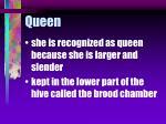 queen68