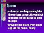 queen69