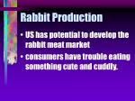 rabbit production23