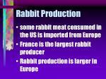 rabbit production9