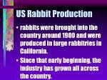 us rabbit production
