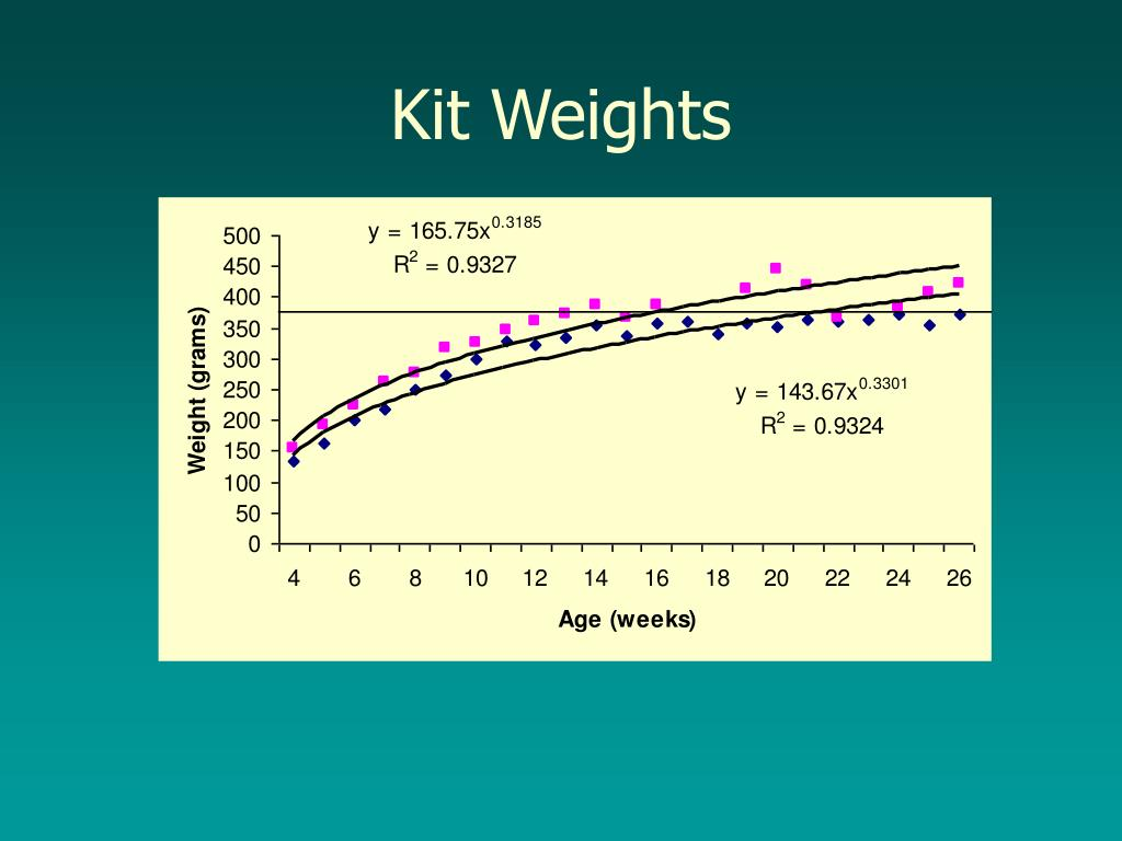 Kit Weights