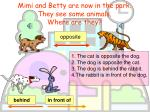 mimi and betty are now in the park they see some animals where are they