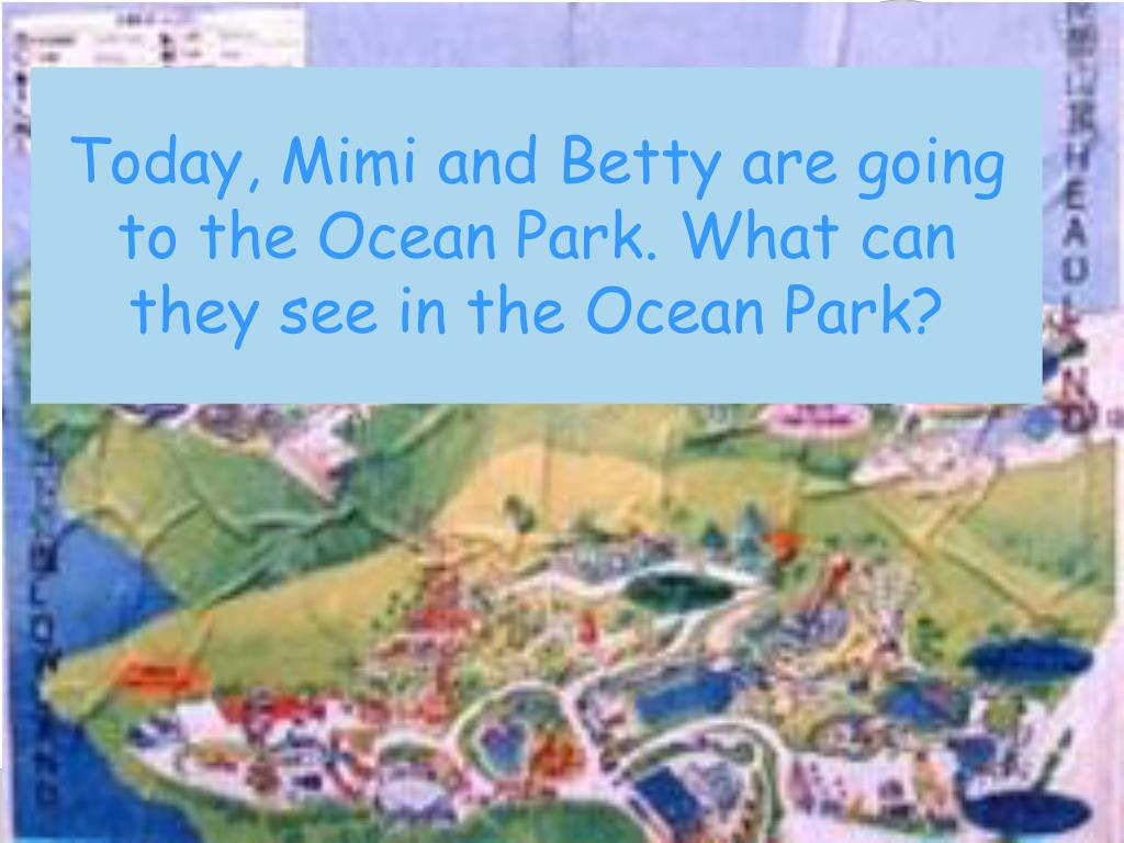 Today, Mimi and Betty are going to the Ocean Park. What can they see in the Ocean Park?