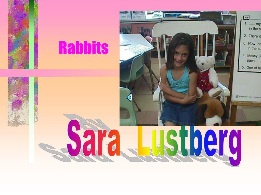 rabbits l.