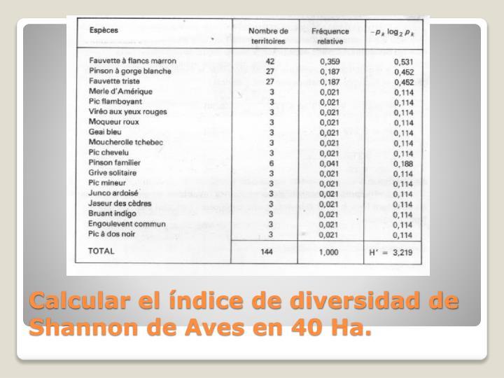 Calcular el índice de diversidad de Shannon de Aves en 40