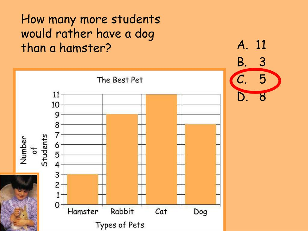 How many more students would rather have a dog than a hamster?
