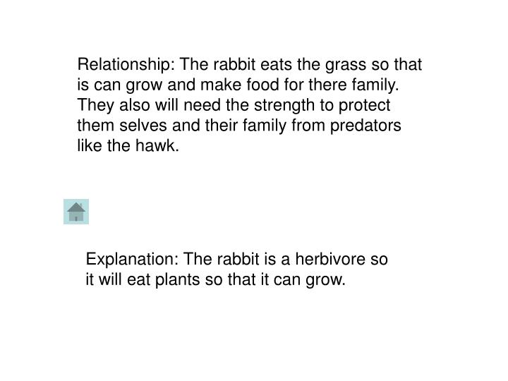 Relationship: The rabbit eats the grass so that is can grow and make food for there family. They als...