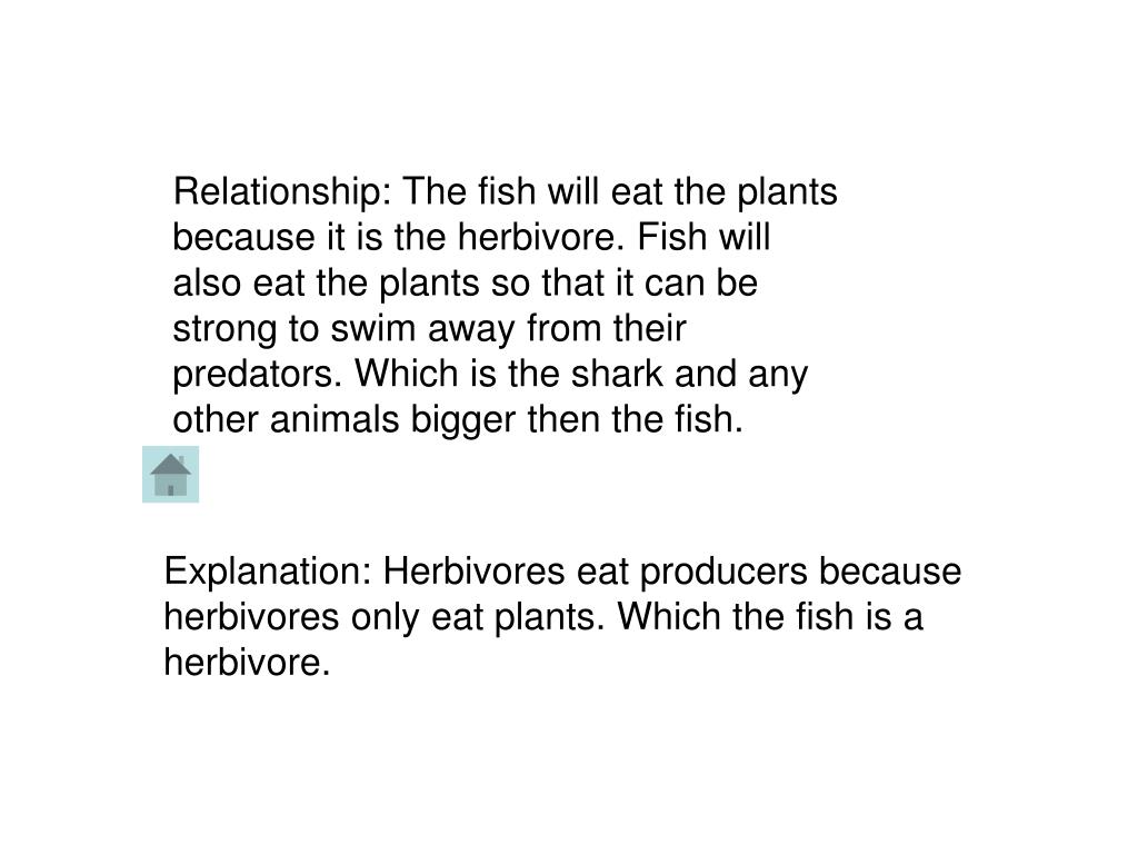 Relationship: The fish will eat the plants because it is the herbivore. Fish will also eat the plants so that it can be strong to swim away from their predators. Which is the shark and any other animals bigger then the fish.