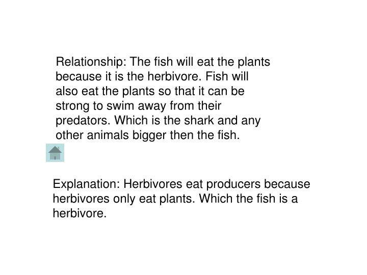 Relationship: The fish will eat the plants because it is the herbivore. Fish will also eat the plant...