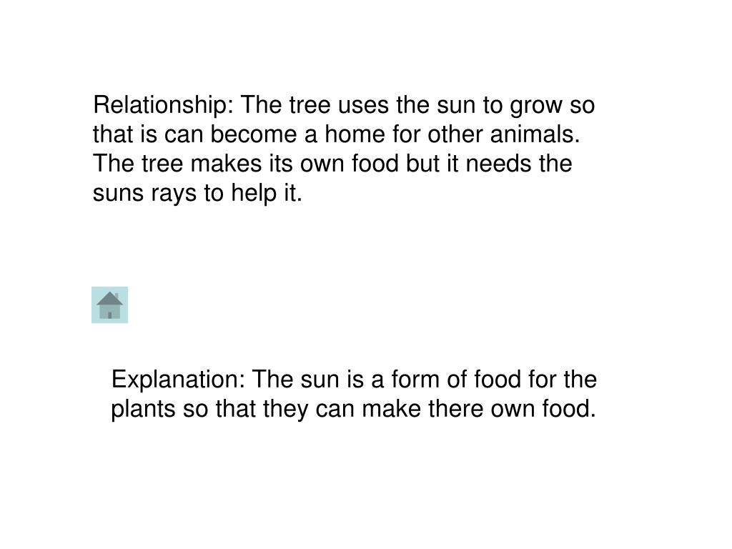 Relationship: The tree uses the sun to grow so that is can become a home for other animals. The tree makes its own food but it needs the suns rays to help it.