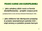 prawo karne unii europejskiej