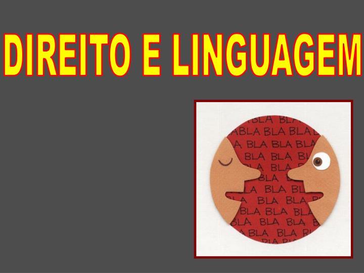 DIREITO E LINGUAGEM