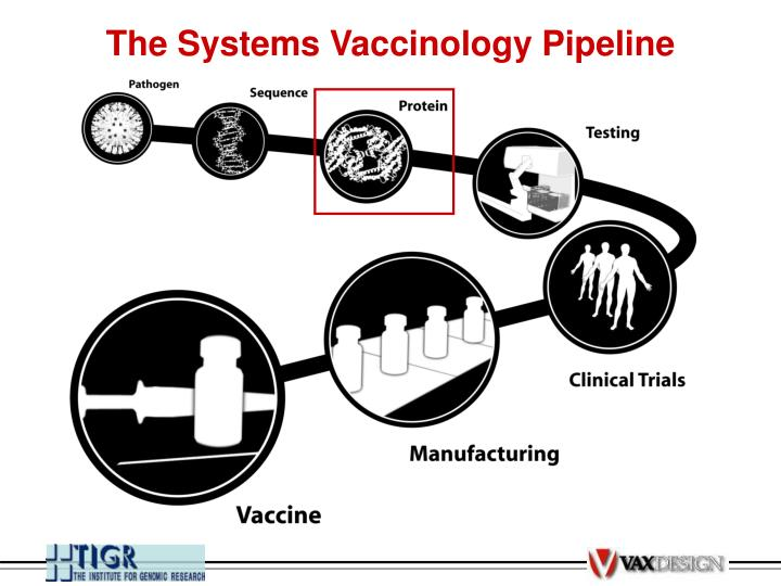 The Systems Vaccinology Pipeline