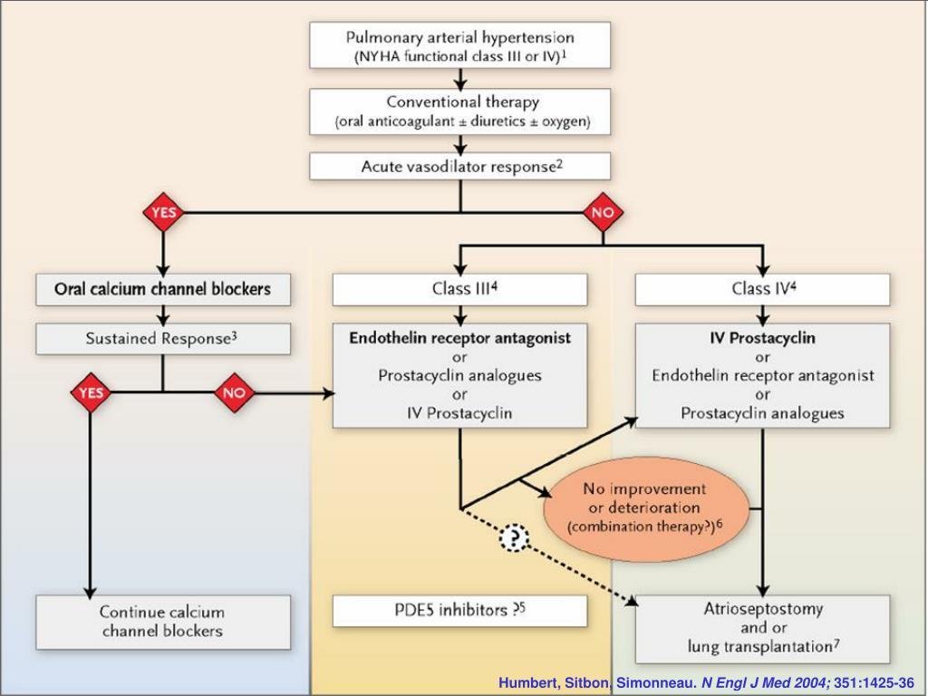 PPT - Hypertension artérielle pulmonaire PowerPoint..