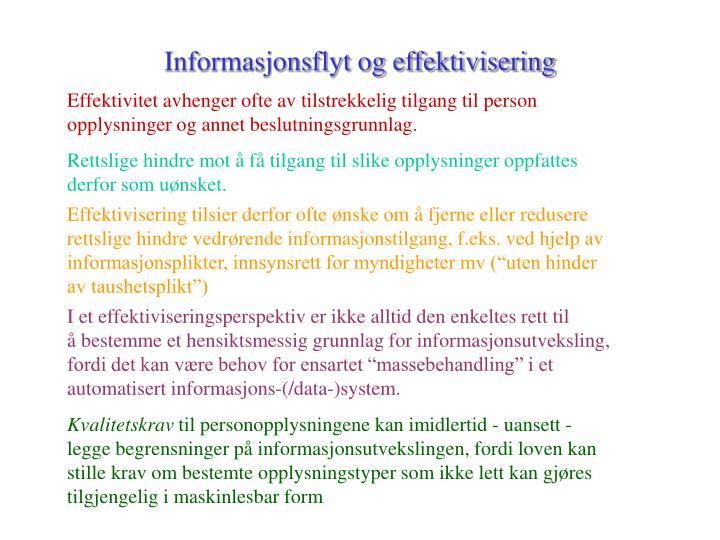Informasjonsflyt og effektivisering