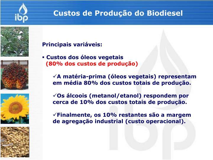 Custos de Produção do Biodiesel