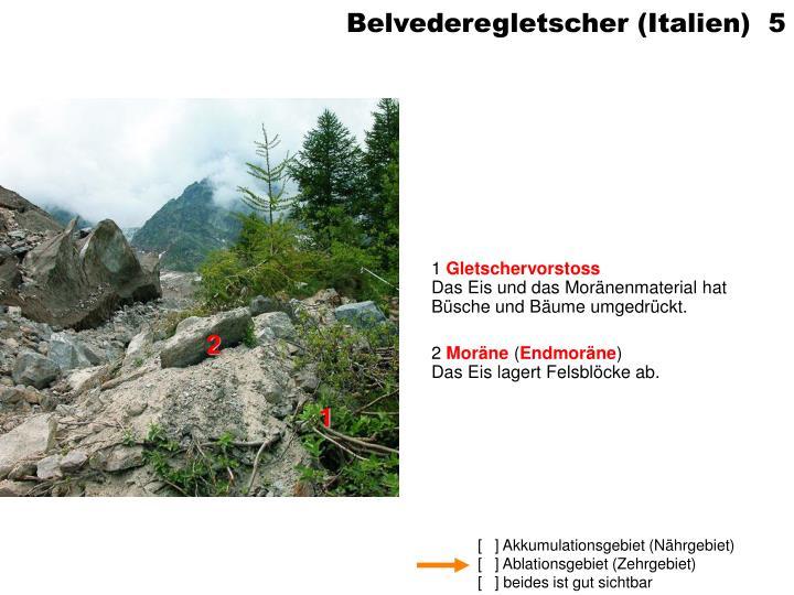Belvederegletscher (Italien)  5