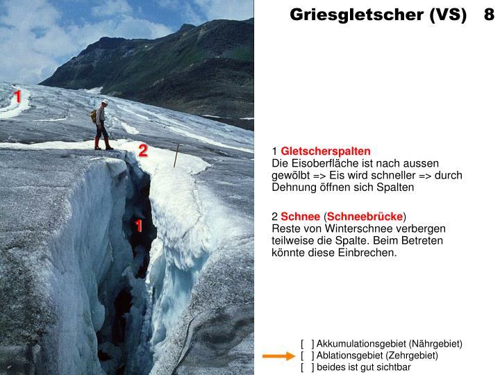 Griesgletscher (VS)   8