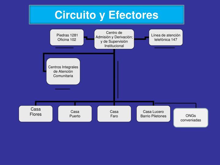 Circuito y Efectores