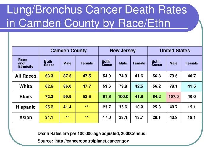 Lung/Bronchus Cancer Death Rates in Camden County by Race/Ethn